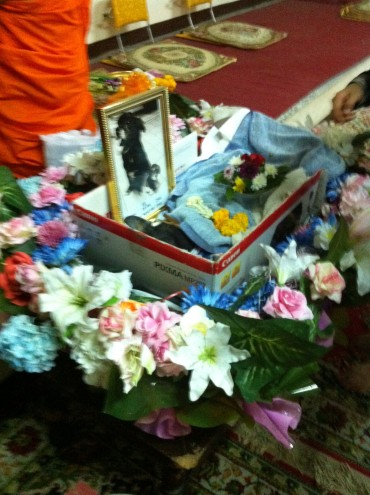 Animal funeral BKK